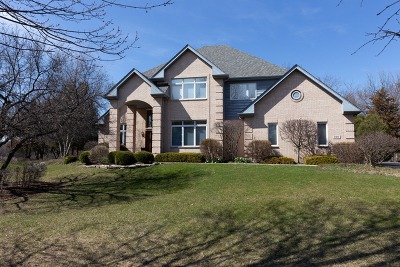 Barrington Single Family Home For Sale: 220 Carriage Trail