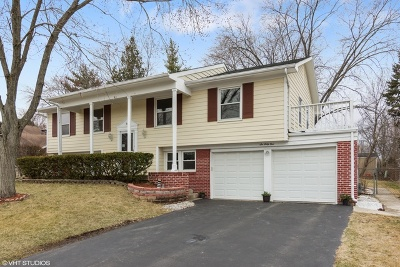 Buffalo Grove Single Family Home New: 661 Silver Rock Lane