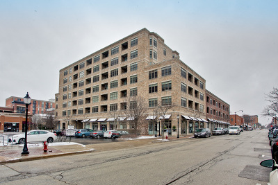 Arlington Heights Condo/Townhouse New: 10 South Dunton Avenue #207