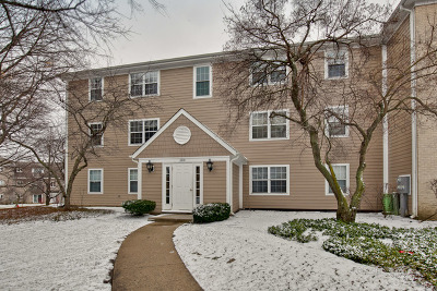 Libertyville Condo/Townhouse New: 104 East Winchester Road #F