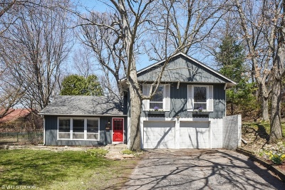 Carpentersville Single Family Home For Sale: 107 Briarwood Avenue