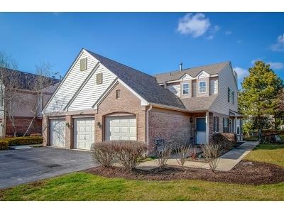 Schaumburg Condo/Townhouse New: 1710 Grove Avenue #D