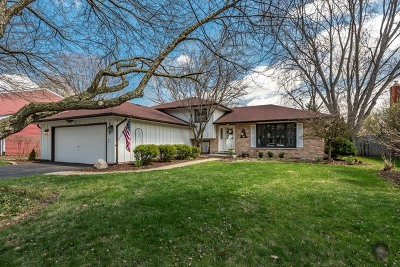 Naperville Single Family Home For Sale: 1628 Verdin Lane