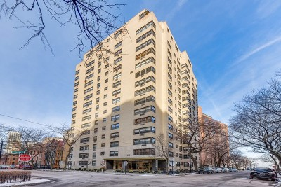 Chicago IL Condo/Townhouse New: $539,900