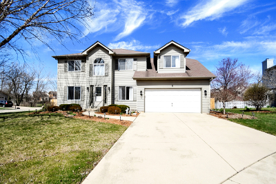 Bolingbrook Single Family Home New: 6 Golf View Court