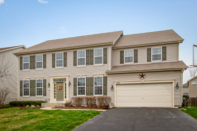 Oswego Single Family Home New: 537 Litchfield Way