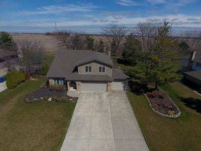 Homer Glen Single Family Home For Sale: 16811 Meadowcrest Drive