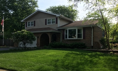 Naperville Single Family Home New: 1036 Williamsburg Drive