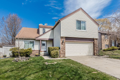 Buffalo Grove Single Family Home New: 646 Buckthorn Terrace