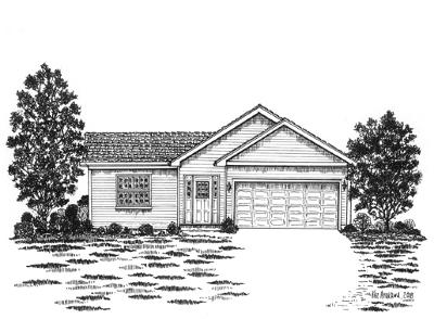 Elburn Single Family Home New: 206 East Kansas Street