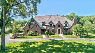 Kane County Single Family Home For Sale: 34w791 Army Trail Road