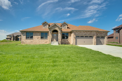 Frankfort Single Family Home New: 22626 Hunters Trail