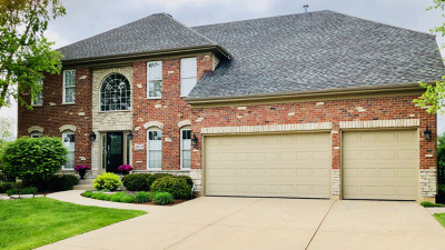 Naperville Single Family Home New: 3972 Bluejay Lane