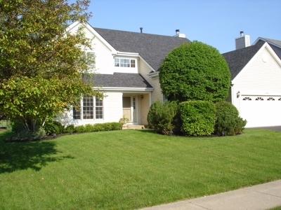 Lake Zurich Single Family Home For Sale: 1115 Stratford Lane