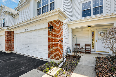 Schaumburg Condo/Townhouse New: 2945 North Clematis Drive #2945