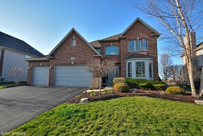 Plainfield Single Family Home New: 25740 Meadowland Circle