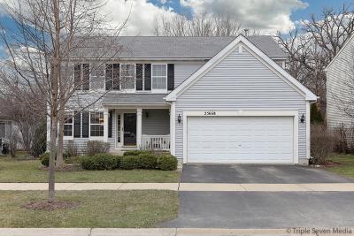 Round Lake Single Family Home New: 25668 West Brooks Farm Road