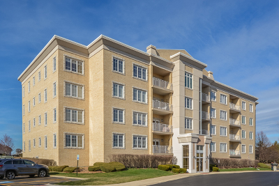 Orland Park Condo/Townhouse New: 9730 Koch Court #1B