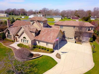 Aero Estates Single Family Home For Sale: 9s280 Stearman Drive