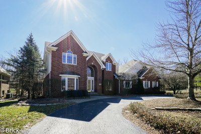 Mokena Single Family Home For Sale: 11529 Swinford Lane