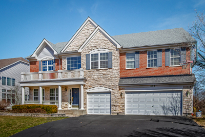 Bartlett Single Family Home For Sale: 393 Lela Lane