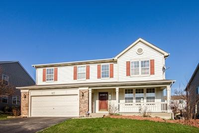 South Elgin Single Family Home For Sale: 457 Ashbrook Lane