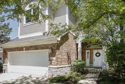 Lisle Single Family Home For Sale: 1216 Lake Shore Drive
