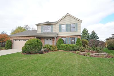 Woodridge Single Family Home For Sale: 2124 Bening Drive