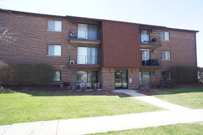 Orland Park Condo/Townhouse For Sale: 7435 Tiffany Drive #1B
