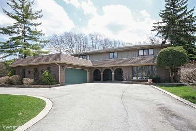 Palos Heights, Palos Hills Single Family Home For Sale: 6705 Golfview Lane