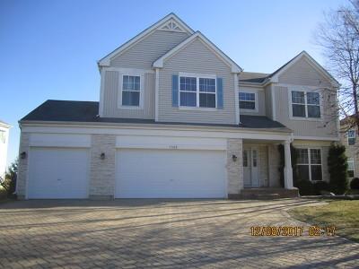 Bolingbrook Single Family Home For Sale: 1523 Trails End Lane