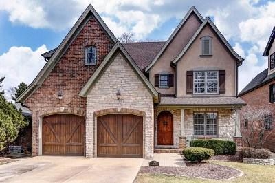 La Grange Single Family Home For Sale: 735 South Madison Avenue