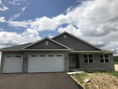 Ogle County Single Family Home For Sale: 146 South Russell Road