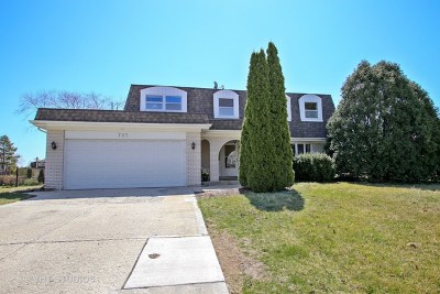 Schaumburg Single Family Home For Sale: 725 Sandpebble Drive