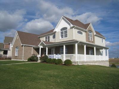 Plainfield Single Family Home For Sale: 12611 Shenandoah Trail