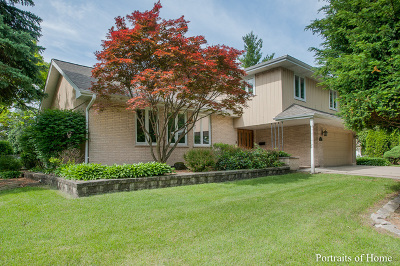 Villa Park Single Family Home For Sale: 223 East Washington Street