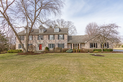Elgin Single Family Home For Sale: 11n156 Williamsburg Drive