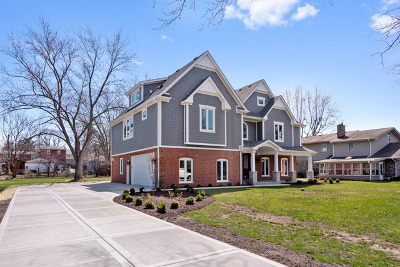 Hinsdale Single Family Home For Sale: 9s765 William Drive