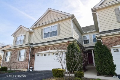 Roselle Condo/Townhouse For Sale: 547 Bobby Ann Court