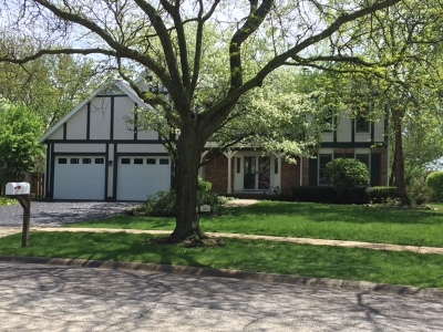 Schaumburg Single Family Home For Sale: 501 Greenhill Lane