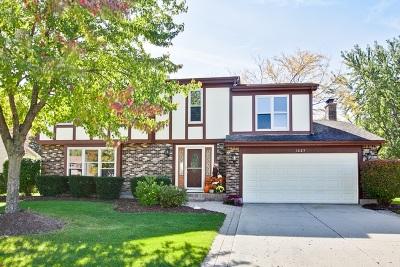 Hoffman Estates Single Family Home For Sale: 1625 Freeman Road