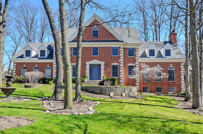 Burr Ridge Single Family Home For Sale: 145 Glenmora Drive