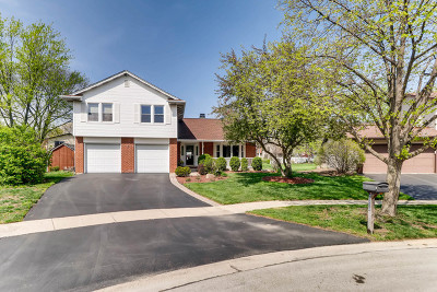 Downers Grove Single Family Home For Sale: 1530 Springside Place