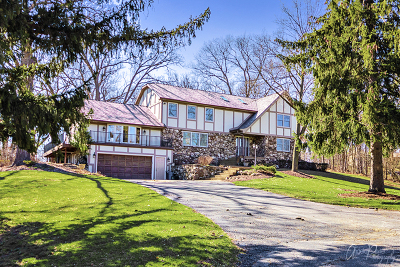 McHenry Single Family Home For Sale: 2660 Regner Road