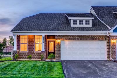 Naperville Condo/Townhouse For Sale: 4169 Lobo Lane