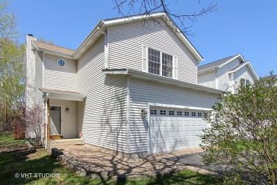Lake Zurich Single Family Home Contingent: 23578 North Field Road