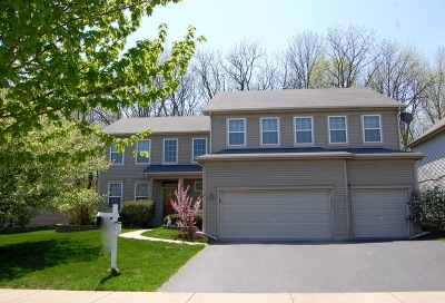Bolingbrook Single Family Home For Sale: 789 Hartford Lane