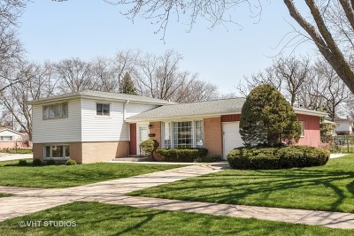 Mount Prospect Single Family Home For Sale: 101 South Waverly Place