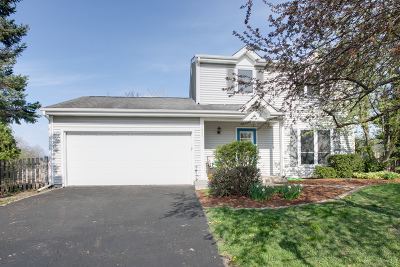 Island Lake Single Family Home For Sale: 3403 Revere Lane