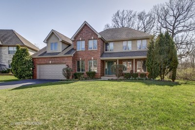 Bolingbrook Single Family Home For Sale: 10 Roanoke Court